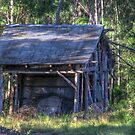 Hut, Dignams Creek, NSW by Alison Howson