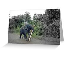 Sri Lanka elephant help Greeting Card