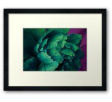 Green Peony Framed Print