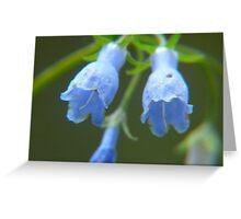 Twin Bells Greeting Card