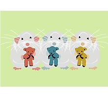 Three Mice with teddys Photographic Print