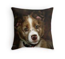 Australian Shepherd Pup Throw Pillow