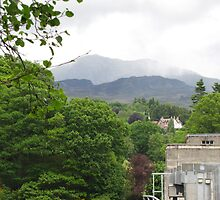View from dam at Pitlochry by Yvonne Mullen