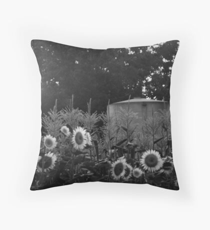 Late summer sunset on the farm Throw Pillow