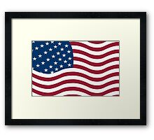 American flag vector Framed Print