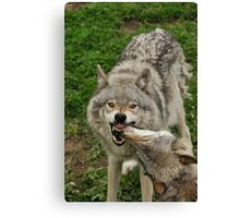 Family dispute Canvas Print