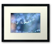 Summer Sparkles Framed Print