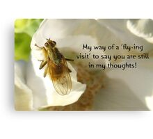 Flying Visit greeting card Canvas Print