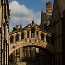 The Bridge of Sighs by Matthew Walters