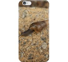 Snail Express iPhone Case/Skin