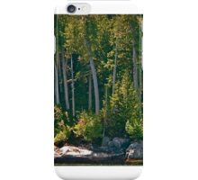 Lagoon Cove iPhone Case/Skin
