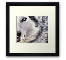 wolf brush Framed Print