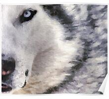 wolf brush Poster