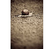 OnePhotoPerDay Series: 167 by L. Photographic Print