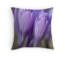 1093 . Crocus sativus . God bless you each and every day with much love and Joy and wonderful inside and out !! Throw Pillow