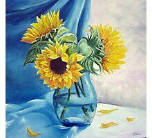 Chrysanthemums Photographic Print