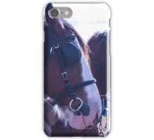 Clydesdales - getting hitched up for work iPhone Case/Skin