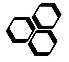 Hexagonal 1 by aprille broomhead