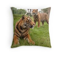 It's a cats life... Throw Pillow