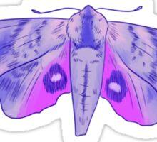 sphingidae Sticker