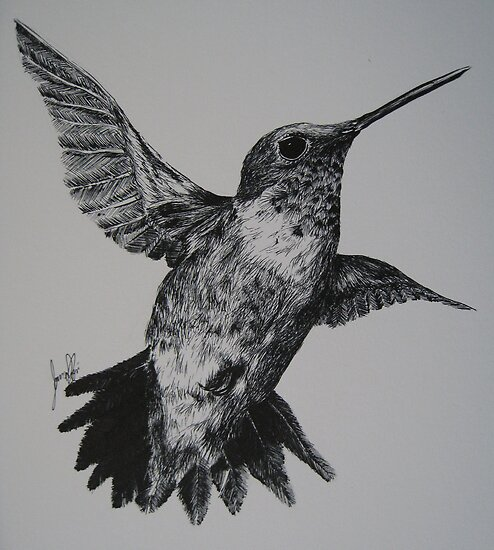 Ruby-Throated Hummingbird by iseejamespeople