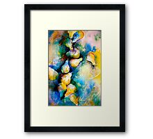 Pears and Lace... Framed Print