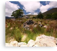 Valley Cottage- Kerry Canvas Print