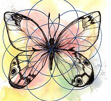 Butterfly by Freja Friborg