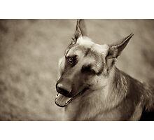 Max Winking Photographic Print
