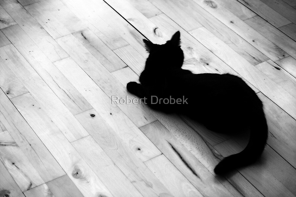 Beast of the house by Robert Drobek