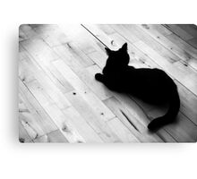 Beast of the house Canvas Print