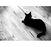 Beast of the house Photographic Print