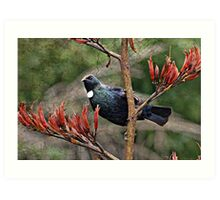 tui on a textured background Art Print