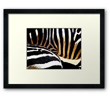 The Striped Fur Framed Print