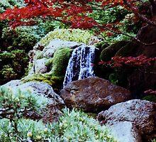 waterfall,Japanese tea garden by califpoppy1621