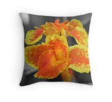 Selective Color Throw Pillow