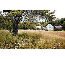 Summer at The Farm on Cushman Pond Road Photographic Print