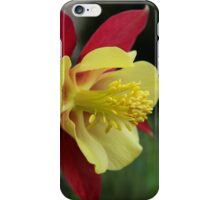 Columbine iPhone Case/Skin