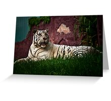 Sumartrian White Tiger Greeting Card