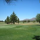 Now if i can make an Eagle... Turquoise Valley Golf Course-Az by Ann  Warrenton