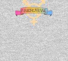 Pansexual Banner Unisex T-Shirt