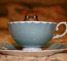 Tea Toad by artandrhyme