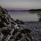 The Roots of Loch Lomond by joak