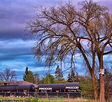 Rural Train Yard by rocamiadesign