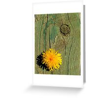 Free From the Shackles of Language and Measurable Time Greeting Card