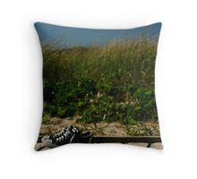 Converse shoes on dock at beach Throw Pillow