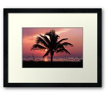 Florida Sunrise Framed Print