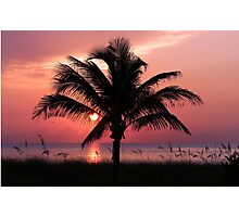 Florida Sunrise Photographic Print