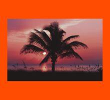 Florida Sunrise Kids Tee
