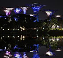 Gardens By The Bay by CPAULFELL